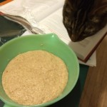 Whole Wheat Bread poolish and Cat